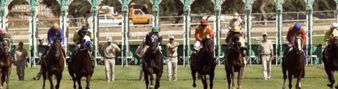 Off track betting locations arizona sports lines betting