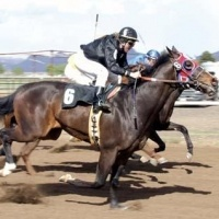 Az off track betting locations best betting sites horse racing